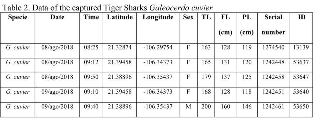 Table 2. Data of the captured Tiger Sharks Galeocerdo cuvier